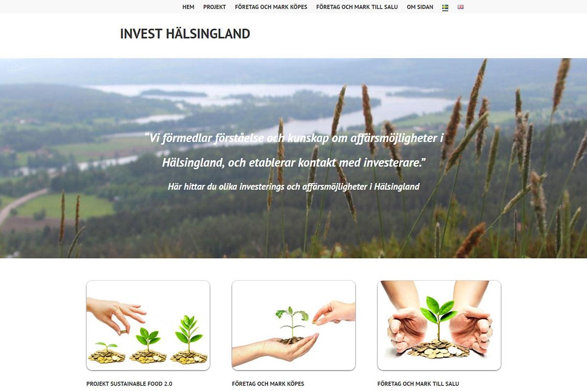 Investera i Hälsingland, NärLjus